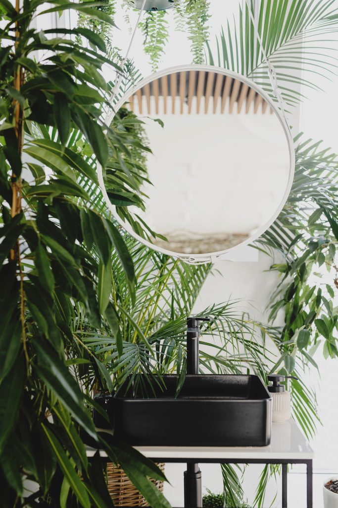 how to be more productive is connected with taking time for you. Pic shows a mirror surrounded by plants.